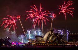 Shutterstock 1249256920